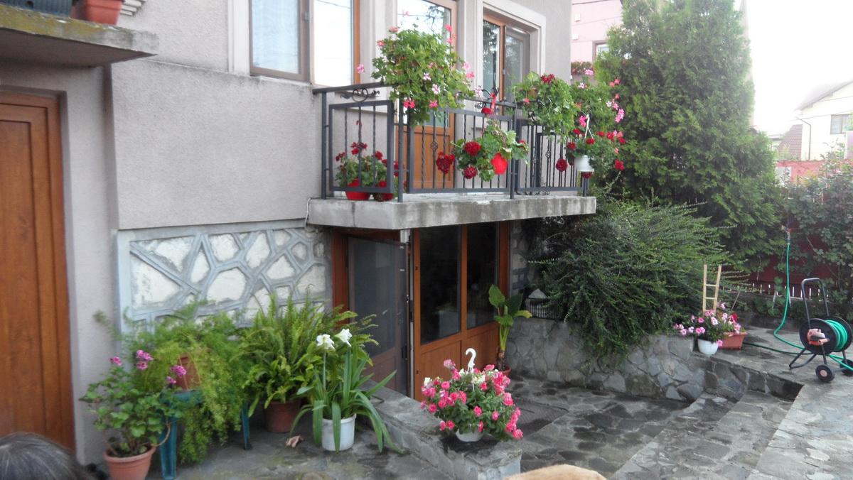 Casa Targoviste – Central